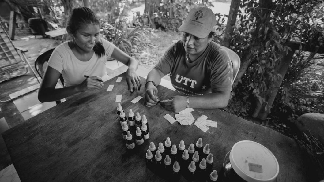 UTT-medicina-natural-hierbas-salud-Juan-Pablo-Barrientos-02