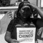 Columna de géneros en #DesdeLaGente: Campaña ¡Basta de chineo!