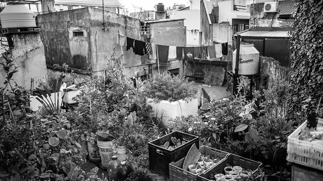 carlos-briganti-reciclador-urbano-agroecologia-tierra-huerta