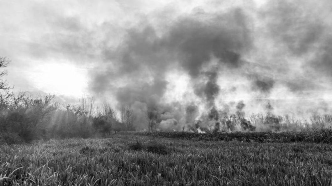 hudson-parana-humedales-incendios-2