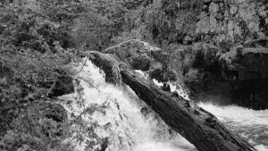 El Lawen: un territorio sin fronteras