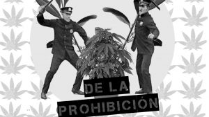 """""""La política de drogas actual es un desastre y afecta millones de vidas"""""""