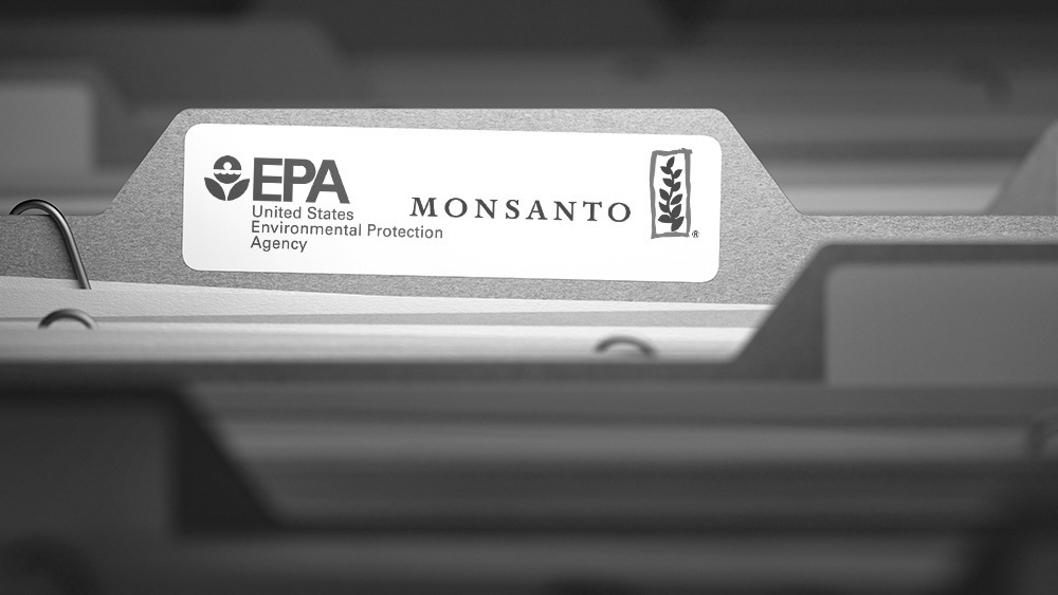 EPA-Monsanto-google