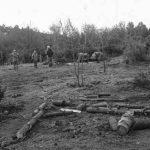 El Ejército y la comunidad Millalonco-Ranquehue: Cuando el Estado rompe y estigmatiza
