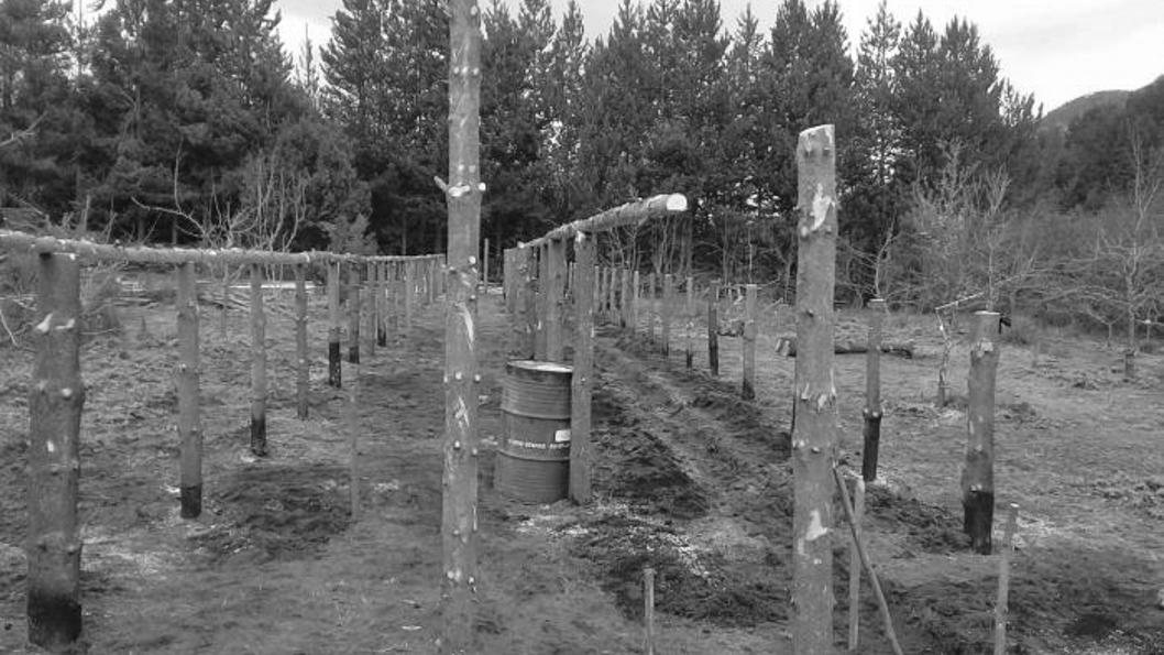 Ejército-comunidad-Millalonco-Ranquehue- escuela-militar-montaña-2
