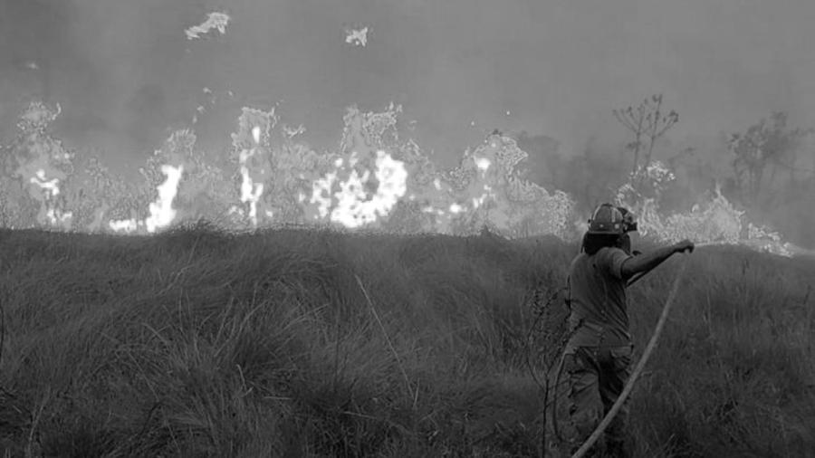 PAraguay incendios forestales la-tinta
