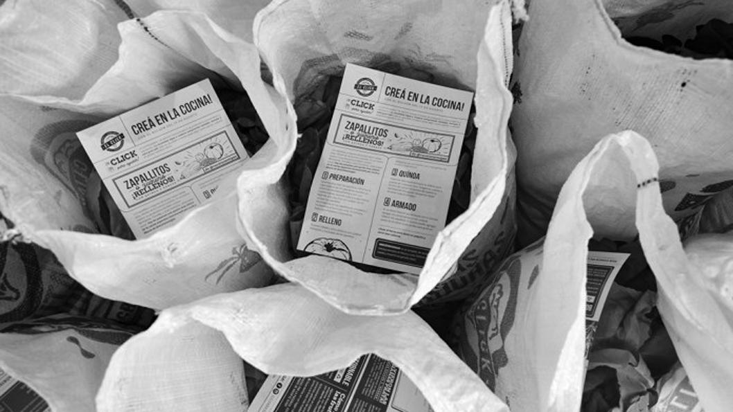 bolson-agroecológico-semillas-alimento-salud