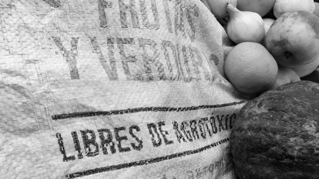 bolson-agroecológico-verdura-fruta-alimento-salud-2
