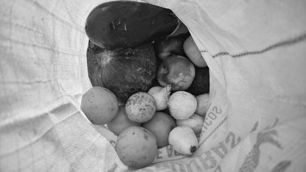 bolson-agroecológico-verdura-fruta-alimento-salud