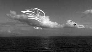 Sobre Nosotros Solo el Cielo: nubografías por mail