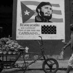 Aquella solitaria vaca cubana
