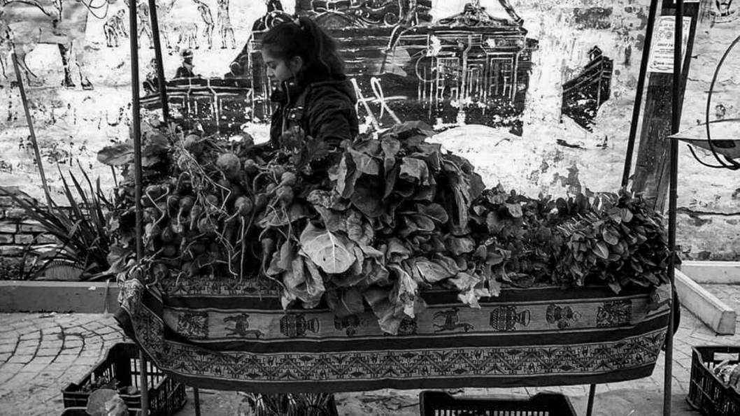 Feria-Agroecológica-Córdoba