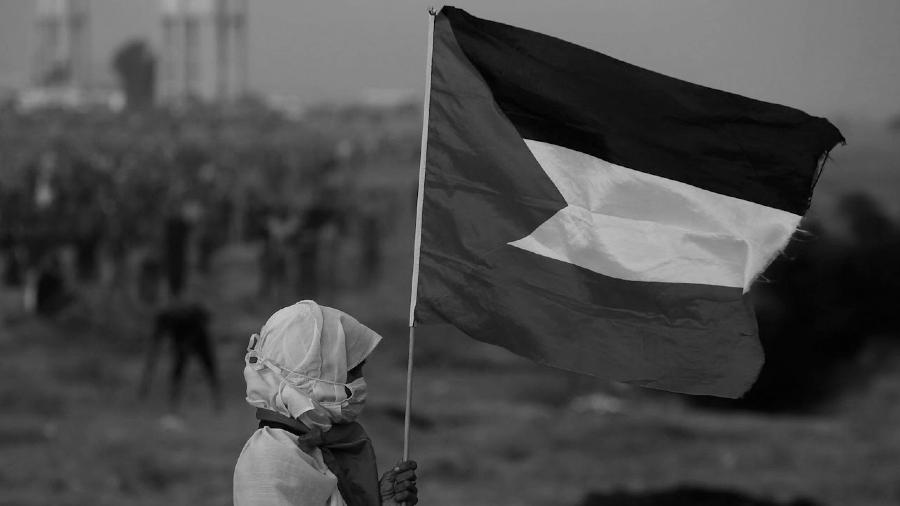 Palestina mujer con bandera la-tinta