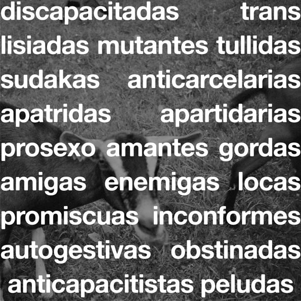 Torceduras-bifurcaciones-discapacidad, diversidad-sexual-neurodivergencia-desmedicalización-despatologización- diversidad-corporal