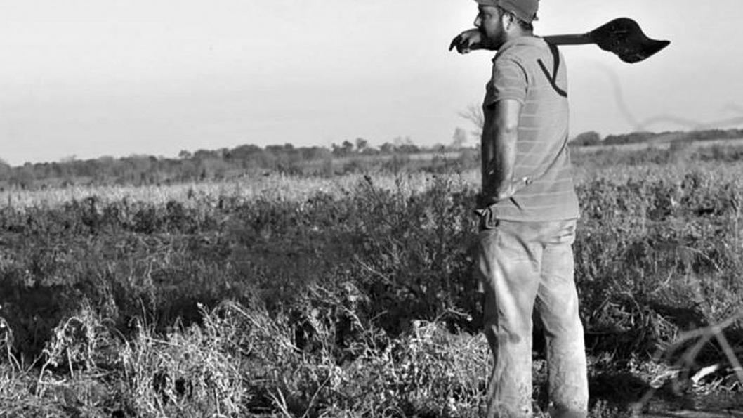 agroecologia-cooperativa-san-carlos-campo-córdoba
