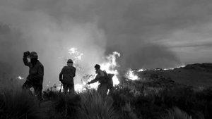 Opereta mediática y criminalización: desmienten que brigadistas sean usurpadores de terrenos