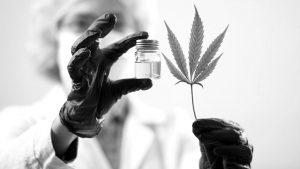 La provincia de Córdoba adherirá a la Ley Nacional de Cannabis Medicinal