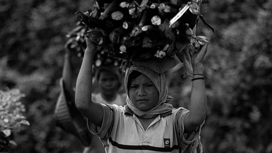 mujer-rural-recolección-productos-forestales.jpg-2