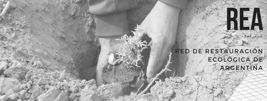 red-restauracion-ecologica-argentina-incendios-ambiente