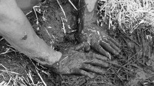 Permacultura: de la autosuficiencia a la intersuficiencia