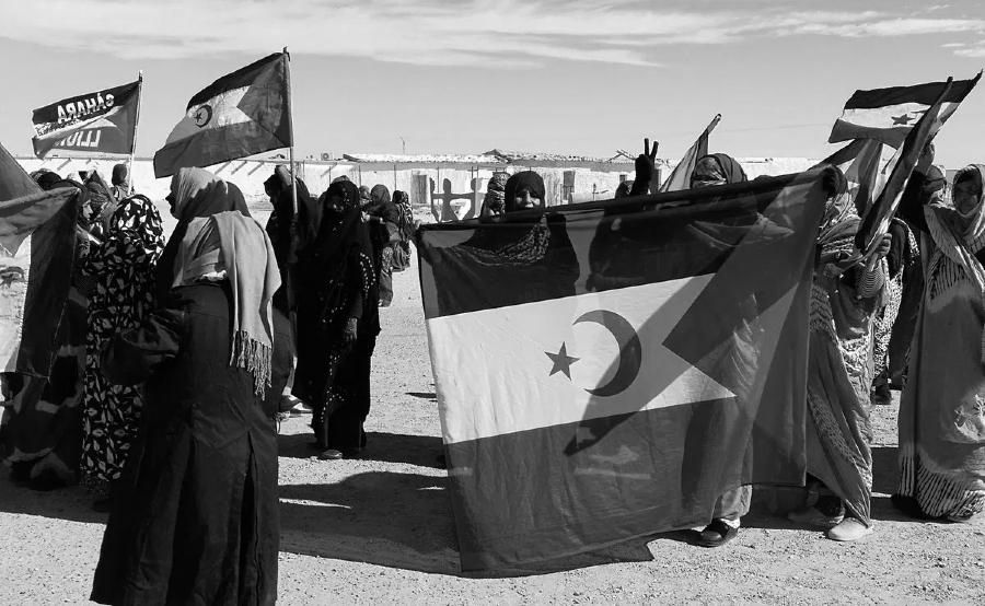 Sahara Occidental mujeres organizadas la-tinta