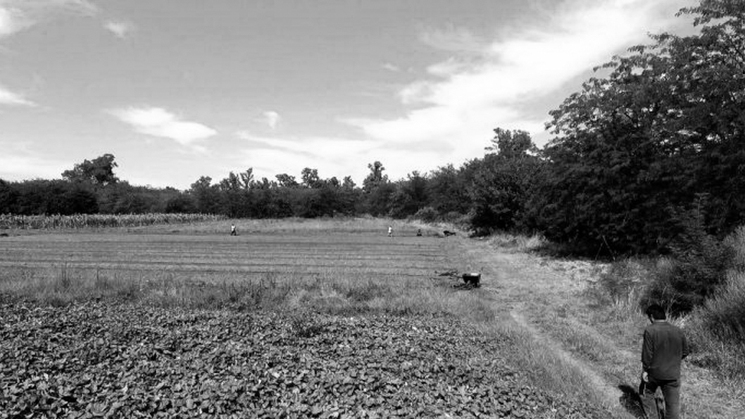 UTT-agroecología-tierra-campo-colonias-agroecológicas-2