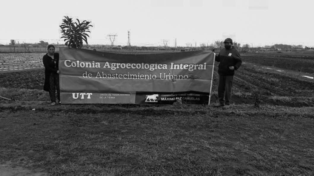 UTT-agroecología-tierra-campo-colonias-agroecológicas-4
