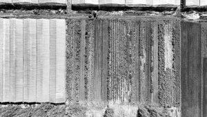 Las Colonias Agroecológicas: una propuesta que crece en todo el país