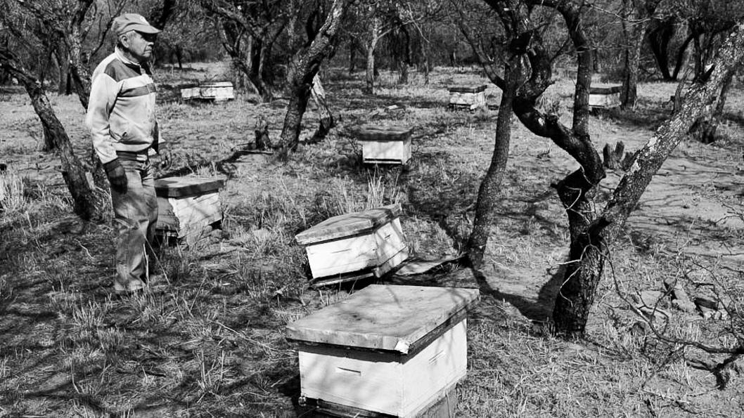 libro-Leonardo-Rossi-agroecologia-Córdoba-campo-productores-alimentos-2