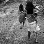 """""""Fui obligado a entrar a tierra indígena con un misionero"""", afirma servidor de Funai"""
