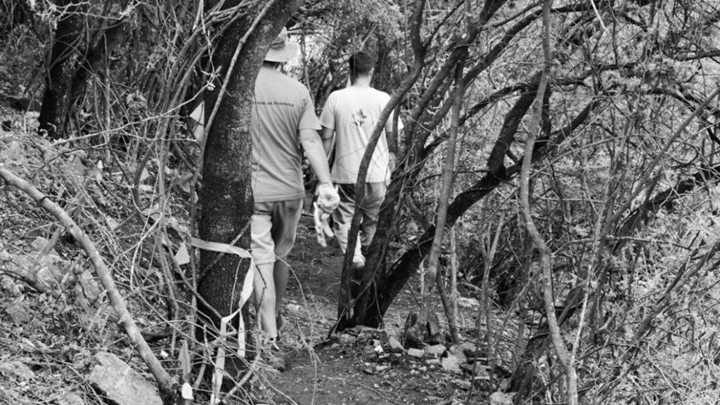 Jardineros-sin-fronteras-Naturalia-inclusión-discapacidad-2