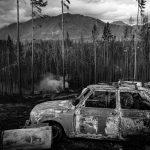 Fotogalería: incendios en la Patagonia