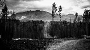 Incendios y el discurso anti-mapuche