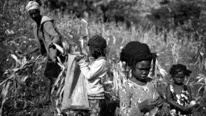 """""""Potomitan Lavi a"""": una mirada al movimiento de mujeres y feminista haitiano"""