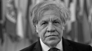 El continuo injerencismo de Luis Almagro contra Bolivia y la democracia