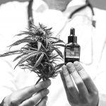 Córdoba se acerca a la Ley nacional de Cannabis Medicinal