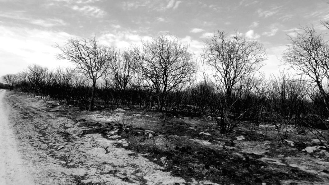 eco-etnocidios-cordoba-traslasierra2