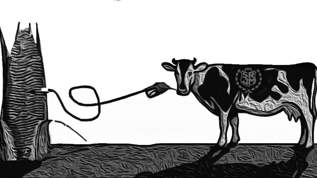 ilustración-bioganado-soja