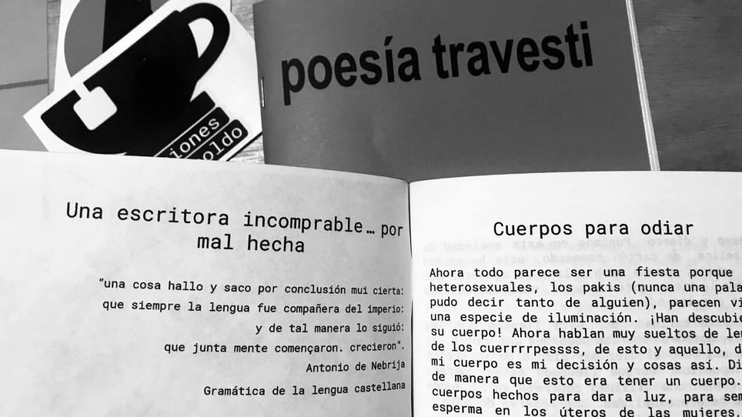 poesia-travesti-claudia-rodriguez