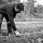 La tenencia de la tierra sin mitos: una demanda que quiere ser ley