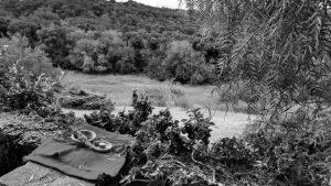 Ecofeminismos en Sierras Chicas: del fuego, brotarán redes
