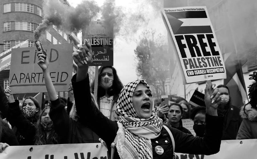 palestina manifestaciones solidarias la-tinta