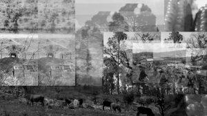 13 semillas zapatistas: Gu Juan Tu Juan, trabajo y vidas invisibilizadas