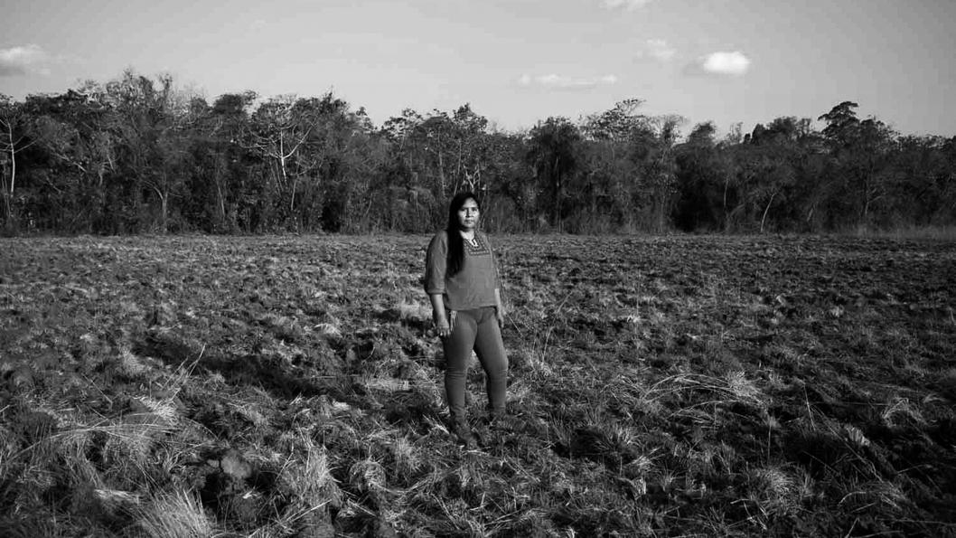 agua-paraguay-bosque-5
