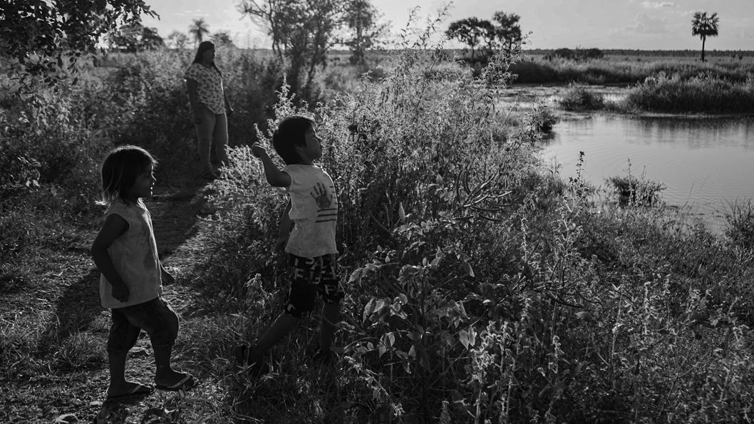 agua-paraguay-bosque-niñes