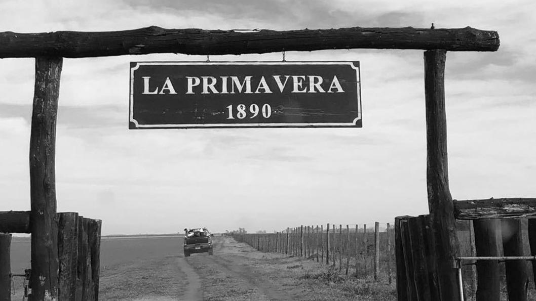 campo-La-Primavera-Buenos-Aires-agroecoloía-2