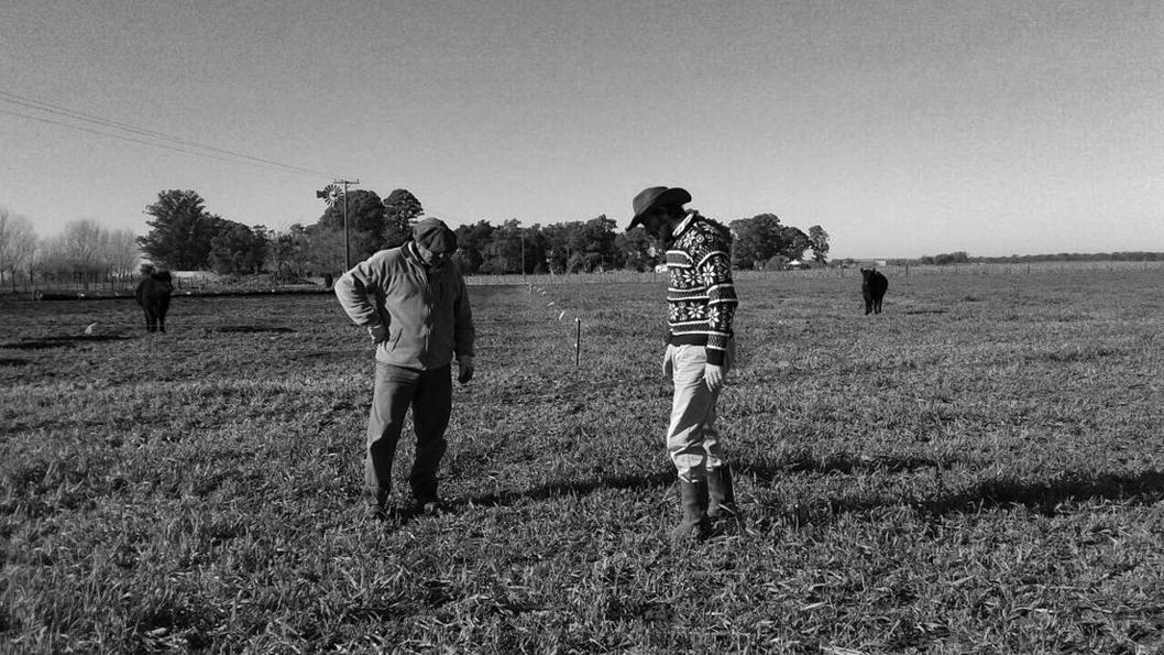 campo-La-Primavera-Buenos-Aires-agroecoloía-3