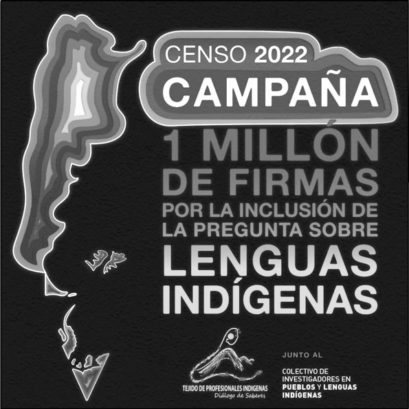 lenguas-indigenas-tejido-profesionales