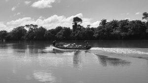 Pico de Oro: una isla cercada por agua y palma de aceite