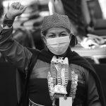 Una mapuche en lo alto de la Constituyente chilena